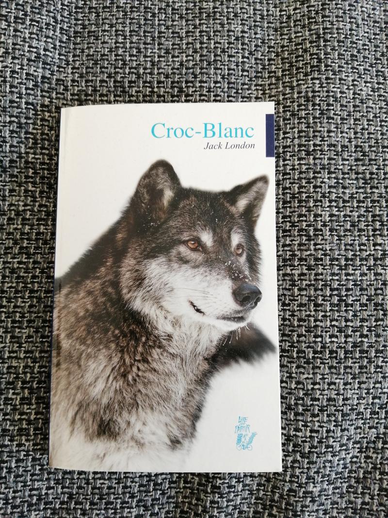 """série de 30 """"Croc Blanc"""""""